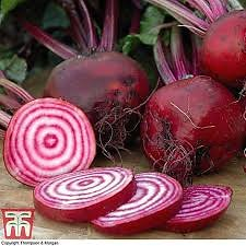 Home. beetroot